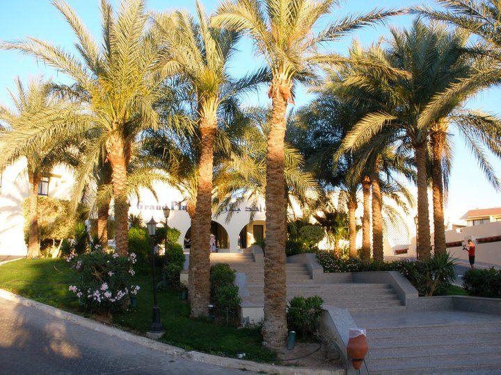 letovanje/egipat/hurgada/hotel-grand-plaza/hotel-grand-plaza-3.jpg