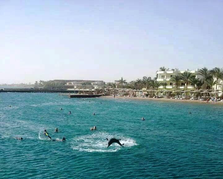 letovanje/egipat/hurgada/hotel-palm-beach/hotel-palm-beach.jpg