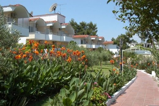 letovanje/grcka/grcka-hoteli/kasandra/hanioti/sousouras-bungalows/sousouras-bungalows-5.jpg