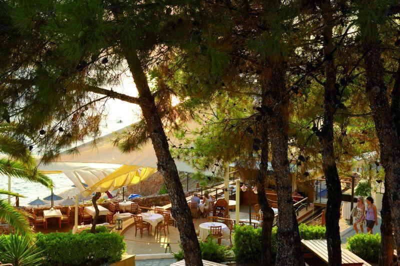 letovanje/grcka/grcka-hoteli/tasos/potos/alexandra-beach/alexandra-beach-4-7.jpg