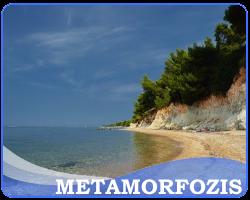 metamorfozis leto