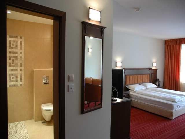 zimovanje/bugarska/bansko/sport-hotel/room101-at-the-mpm-hotel-sport-bansko.jpg